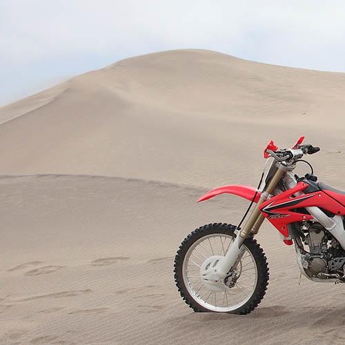 desert cover